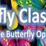 dan-sharridan-butterfly-class.png