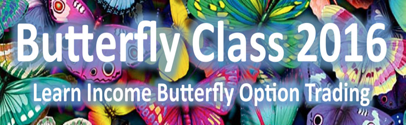 Dan Sheridan – Butterflies for Monthly Income 2016