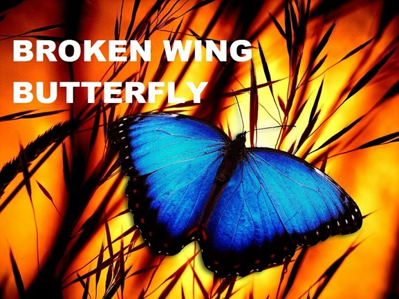 John Locke - Broken Wing Butterfly Master Track Series