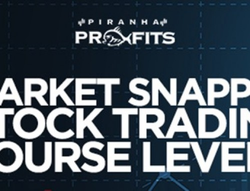 Adam Khoo – Piranha Profits – Stock Trading Course Level 2 Market Snapper