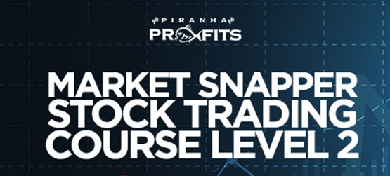 Adam Khoo - Piranha Profits - Stock Trading Course Level 2 Market Snapper