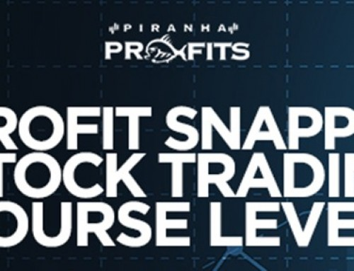 Adam Khoo – Piranha Profits – Stock Trading Course Level 1 Profit Snapper