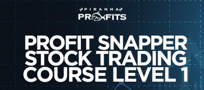 Piranha Profits - Stock Trading Course Level 1 Profit Snapper
